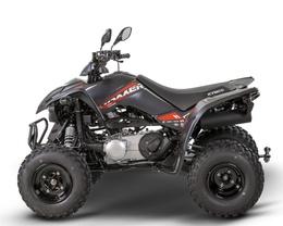 MAXXER 300 / T3b